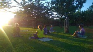 Elzenoord meditatie avondzon